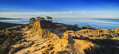 Torrey Pines Reserve In Early Morning Light - Explored (Bill Gracey) Tags: california panorama seascape nature beauty landscape morninglight nationalpark torreypines sandiego pano erosion pacificocean formations lowsun wideanglelens torreypinesreserve explored mudwalls