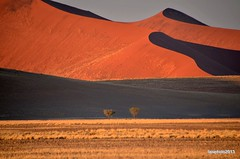 Le dune di Sossuvlei (Liv ) Tags: africa park nikon desert southern national namibia sossusvlei namib deadvlei 2013 laivphoto qualitygroup ildiamante nauklutf