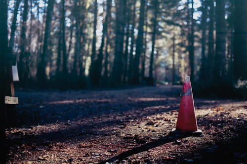 Forrest Warning