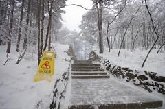 Mt_Huangshan8