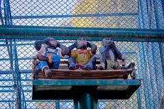 Lahore Zoo (Integral Art) Tags: zoo lahore