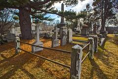 Family Ties (Jackpicks) Tags: winter cemetery philadelphiapennsylvania laurelhillcemetery mygearandme