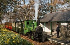Rhydyronen Station, Talyllyn Railway, Tywyn (babs pix) Tags: heritage station wales train westwales north steamrailway narrowgauge talyllynrailway snowdoniamountainsandcoast no6douglas no6douglastalyllynrailway tywyngwynedd