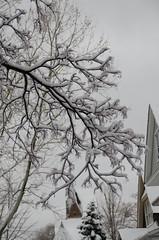Snow-8047