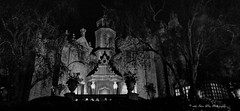 Magic Kingdom (wdwSteve) Tags: disneyworld2013