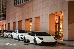 Combo Night (BLACKFOXPHOTOGRAPHY) Tags: white cars three italian singapore fierce fast racing pearl pe lamborghini sv maserati combo granturismo v12 fastcars exo blackfoxphotography exoticars grancabrio alexpenfold effspot v12khan sathyamelvani