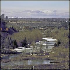 Prince's Lagoon Vista (zawaski) Tags: canada mountains calgary robert graveyard spring cityscape ducks headstones alberta rockymountains pan calgarytower zawaski robertzawaski zawaski2014 2015 zawaski2015 robert robertzawaski2016 zawaski2016