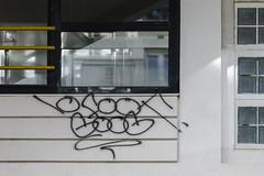 10Foot - Goog (Ruepestre) Tags: 10foot goog art graffiti street paris france streetart urbain urban