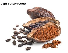 Organic cacao powder full of nutritional value (chrismartin19) Tags: organiccacaopowder raw hemp protein powder wholesaleorganicfood