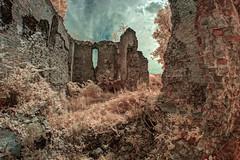 ruin (Bucka Stone) Tags: ir infrared buckastone poland polska podlaskiprzełombugu canon samyang fisheye ruin castle mielnik