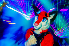 _MG_0607 (Tiger_Icecold) Tags: confuzzled cfz2016 cf2016 furcon furry convention fursuit birmingham party deaddog ddp deaddogparty