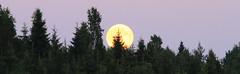 Super Moon at Lake Keskinen_2013_06_24_0032m1 (11) (FarmerJohnn) Tags: cloud moon lake reflection water night clouds canon suomi finland may super calm silence midnight moonlight vesi kuu yö laukaa järvi pilvi junemoon kesäkuu keskinen tyyni keskiyö kuutamo valkola vedenpinta hiljaisuus ef7020040lisusm lakesurface canon7d supermoon heijatus anttospohja superkuu juhanianttonen supermoon23th24thjune2013