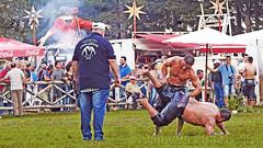 Greece, Central Macedonia, Sochos, 12 Apostles Oil Wrestling Feast (bilwander) Tags: northerngreece centralmacedonia greece sochoscommunity 12apostlesoilwrestlingfeast preteenboysgirlscategory 2018oilwrestlingcompetition wrestlers folkmusicians πανηγυρισoχου2018 σταδιο μενελαοσβασιλικοσ 12αποστολοι αγωνεσπαλησ πεχλιβανησ πεχλιβανηδεσ κιουσπετια drumszurnas drum zurna νταουλιαζουρναδεσ ζουρναστυμπανο macedonia macedonian greek culture vergina sun thessaloniki orthodox hellenic republic prilep tetovo bitola kumanovo veles gostivar strumica stip struga negotino kavadarsi gevgelija skopje debar matka ohrid mavrovo heraclea lyncestis history alexandergreat philipmacedon nato eu fifa uefa un fiba macedoniagreece makedonia macedoniatimeless macédoine mazedonien μακεδονια македонија travel bilwander македонски македонци