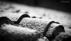 TEJA (victoria@) Tags: nikon nieve frio