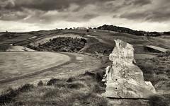 Tane Mahuta (Regan McCaffery) Tags: newzealand bw storm grass clouds golf landscape olympus 18th northland omd tanemahuta em5 kauricliffs micro43 lumixgvario714f40