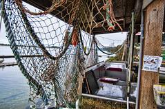 Rockaway Beach (d30n5) Tags: oregon nikon wideangle tokina oregoncoast rockawaybeach d90 rockthrowing tokina1224mm tokinaaf1224mmf4 clamsoysters agreatplacetothrowrocks