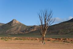 Aquila Landscape (Osdu) Tags: world africa travel landscape southafrica aquila ringexcellence