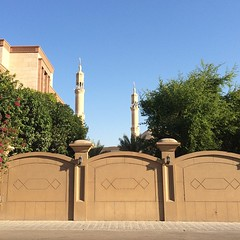 Blue, Green, Brown (ToGa Wanderings) Tags: blue sky tree green wall square minaret uae mosque neighborhood abudhabi squareformat unitedarabemirates khalidiya iphoneography instagramapp uploaded:by=instagram