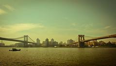 Brooklyn Bridge (Wayne Stadler Photography) Tags: city nyc bridge urban newyork water brooklyn waterfront eastriver burros