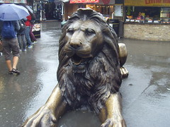 Large lion in Camden, London (Tony Worrall) Tags: city england urban sculpture london wet statue bronze spread sitting place camden south capital lion visit images sit area wait paws camdentown damp imagesoflondon ©2013tonyworrall