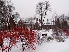 デラウェア大学のSNSにある写真2です。