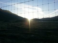 happy new year! (juliejordanscott) Tags: sunrise happynewyear 1365 2014 flickrandroidapp:filter=none