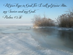 Psalms 43:5b (Sapphire Dream Photography) Tags: life winter inspiration snow cold love ice church religious truth frost power christ god snowy religion jesus freezing christian freeze snowing icy religions scripture christians gospel bibles winters testimony scriptures verse verses holyspirit testament colds froze bibleverse godsword forze testimonies holyinspiration psalms435 psalms435b