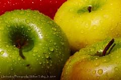 Green Apples (uselessbay) Tags: macro digital nikon flickr wordpress apples macrophotography 2014 uselessbay 500px mastercollection d7000 nikond7000 uselessbayphotography williamtalley visi