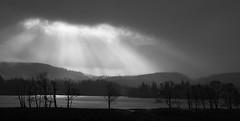 Loch Ard (Annette_C) Tags: white mountain lake black tree water monochrome scotland loch trossachs lochlomond lochkatrine lochard