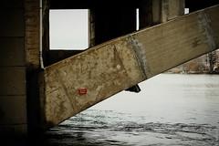 Pont Pasteur (erwannf) Tags: bridge france architecture river lyon rivire pont rhonealpes