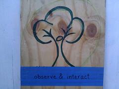 observe & interact_5371036651_l