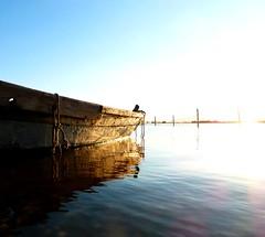P1000071x (gzammarchi) Tags: lago barca italia natura paesaggio riflesso camminata itinerario parcodeltadelpo lidodispinafe smarlacca