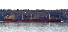 Federal Mattawa (Jacques Trempe 2,320K hits - Merci-Thanks) Tags: river ship quebec stlawrence stlaurent federal fleuve caprouge navire mattawa