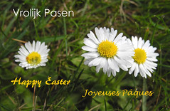 Vrolijk Pasen (~~Nelly~~) Tags: easter pasen pques