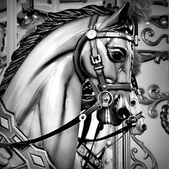 Carousel horse, The Island, Pigeon Forge (gravescout) Tags: blackandwhite horse square italian tennessee carousel tourist pigeonforge bnw attractions sevierville theisland seviercounty flyinghorsecarousel bertazzon