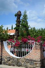 Esquinas benditas (nidia.beco) Tags: plants flores colors corner árbol bugambilias