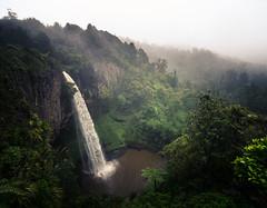Bridal Veil Falls (Kiwi Tom) Tags: landscape tomhall newzealand waterfall water moody mist raid winter raglan bridalveilfalls