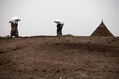 Emergency Food Distribution in Ngop (Albert Gonzalez Farran) Tags: food ngo nrc southsudan assistance crisis emergencyresponse famine foodcrisis fooddistribution humanitarianassistance humanitarianorganisation humanitarianresponse hunger ngop unity