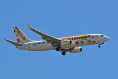TRA1789 Transavia Boeing 737 (PH-HZW) in Sunweb livery approaching Faro (PictureJohn64) Tags: travel portugal plane faro flying airport nikon flickr traffic aircraft aviation air transport flight sigma aeroplane transportation airline pax boeing machines flughafen avio airlines flugzeug avin aeropuerto aereo airliner avion approaching transavia 737 fao aviones aerodrome vliegtuig reizen livery vliegveld planespotting aviacion avies aeronautical spotter aerodynamics flyet lpfr phhzw sunweb compagniesariennes lineaarea d5100 flyselskab picturejohn64 amantesdaaviao tra1789