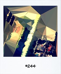"#DailyPolaroid of 21-5-13 #244 • <a style=""font-size:0.8em;"" href=""http://www.flickr.com/photos/47939785@N05/8957643758/"" target=""_blank"">View on Flickr</a>"
