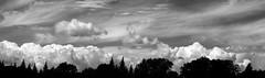 Paysage (bob august) Tags: summer sky bw clouds blackwhite nikon montral noiretblanc ciel t nuages aot villeray d90 nikkor50mm parcjarry nikond90 aperture3 montralsky