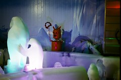 Kaohsiung Polar EXPO (()/ !!) Tags: nikon fuji expo 400 kaohsiung polar f90x xtra 135film