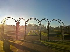 IMG_1097 (cdjbjunior) Tags: parque botnico curitiba jardim tangu