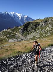 Massif du Mont-Blanc, sentier de randonnée du lac Blanc (Ytierny) Tags: panorama france vertical altitude chamonix sentier montblanc alpinisme lacblanc randonnée hautesavoie sommet eté aiguillesrouges hautemontagne valléedechamonix massifalpin alpesdunord ytierny