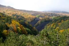 Walking on the Etnaland (Héloïse Picot) Tags: autumn automne volcano autunno etna vulcano volcan etnaland