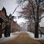 "<b>Entering Auschwitz</b><br/> ""From the Middle Ages to the Holocaust: Jews and Judaism in Europe"", J-term 2013, photo by Lauren Maze. The writing over the gate reads ""Work sets you free."" Every day, when prisoners exited and entered the camp, they would pass through these gates and read that sign. Guards instilled in the prisoners that only through their work could they be free again, when in reality, even hard work would still mean fate for the majority. <a href=""http://farm4.static.flickr.com/3815/10872658524_3ff163060d_o.jpg"" title=""High res"">∝</a>"