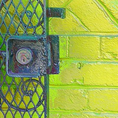 enamelgate (msdonnalee) Tags: yellow gate chartreuse explore fx 문