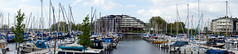 Pays-Bas - Seaport (Le Yti) Tags: voyage travel netherlands digital sony thenetherlands alpha paysbas lisse southholland a55