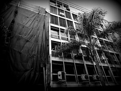 Montevideo (Gabri Le Cabri) Tags: street black building tree architecture uruguay palm fabric works montevideo