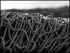 just nets…. (bevscwelsh) Tags: nets northwales bettisfield sonynex6 sonye35mm